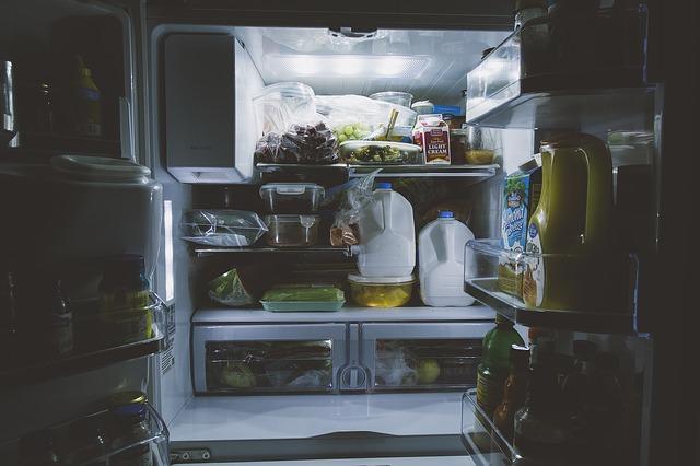 czyszczenie pralki i lodówki