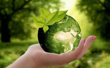 Wszystko co powinniśmy wiedzieć o recyklingu